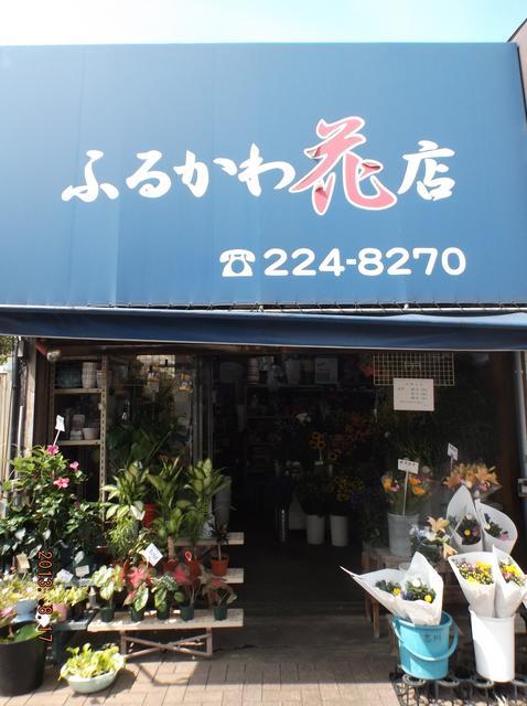 ふるかわ花店
